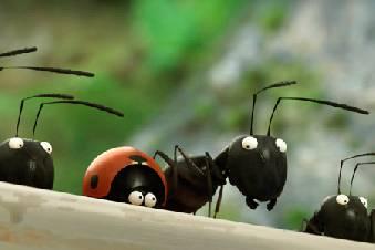 Кадр из фильма Букашки. Приключение в Долине муравьев